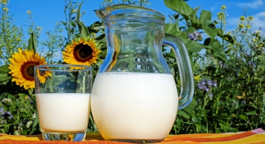 Rozdiel medzi kefírom, cmarom a bifidovým mliekom