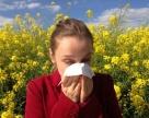 Slovník alergika, alebo výrazy, ktoré by ste mali poznať