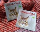 Tip na čítanie pre deti: MačkoVtáky - EKOvýchova prirodzenou cestou